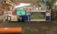イオンモール佐野新都市誕生祭でクリケット体験とクリケットムービーの放映が大人気!